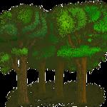 Giornata ecologica 14 ottobre 2018