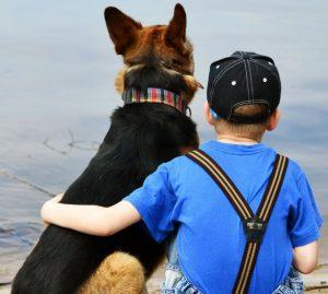 Uomo-cane, come costruire una adeguata relazione