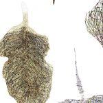 FOGLIaRIA. Land art e performance artistiche nel paesaggio del Parmigiano Reggiano di Montagna