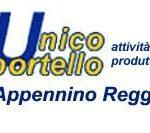 SUAP: rinnovo delle concessioni per l'esercizio di attività commerciali su aree pubbliche